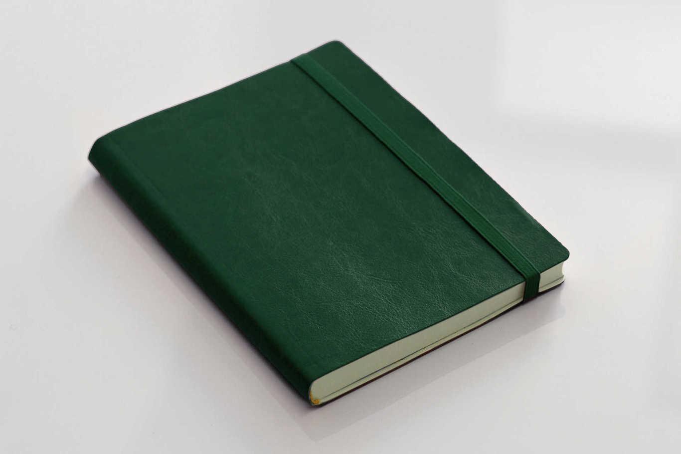 Ежедневник  недатированный Printerio